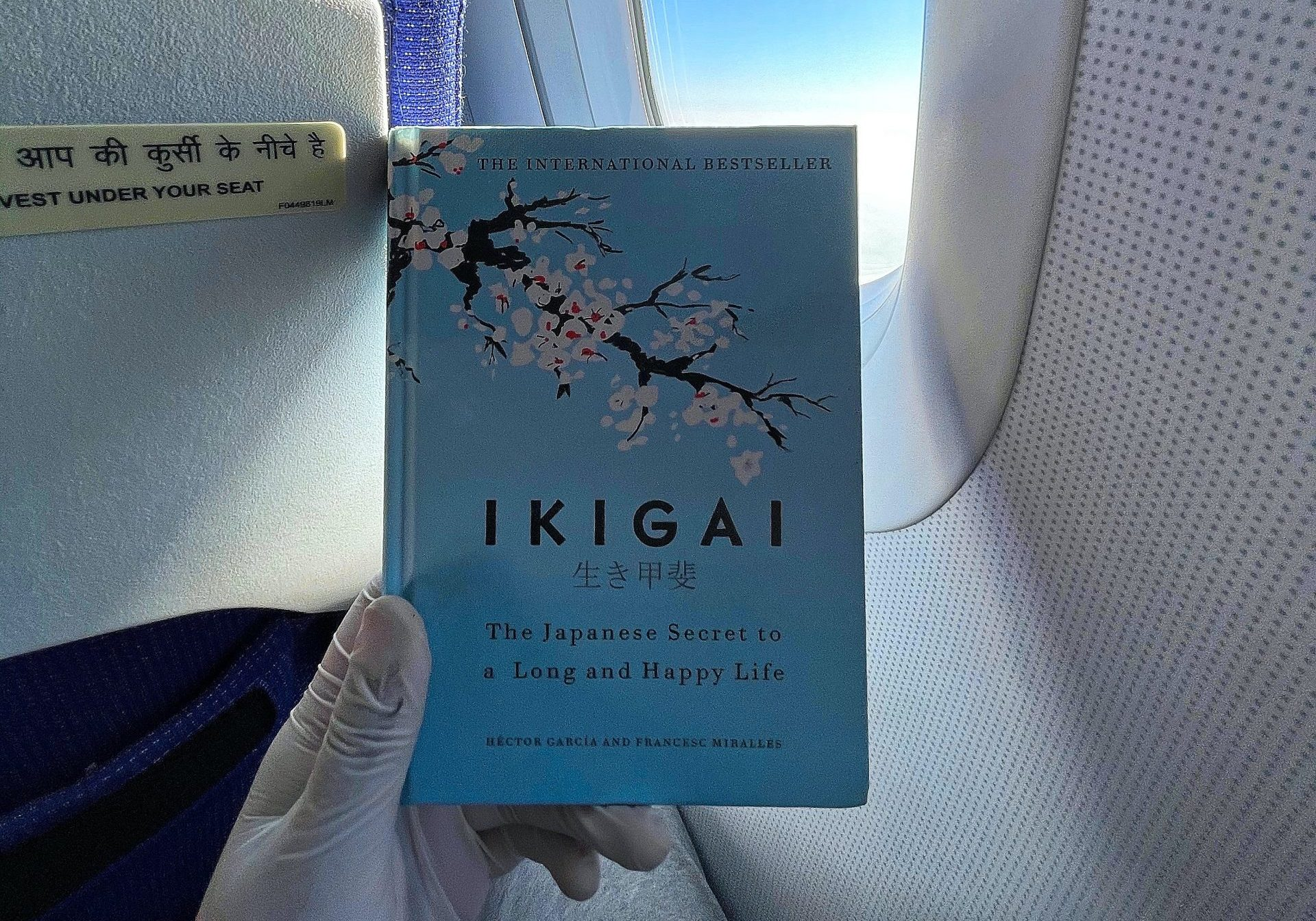 The Ikigai